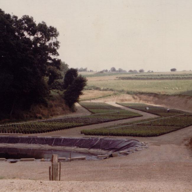aire-conteneurs-1981-large.jpg